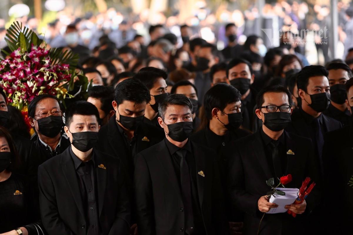 Viet Anh va dan sao den som vieng NSND Hoang Dung-Hinh-7