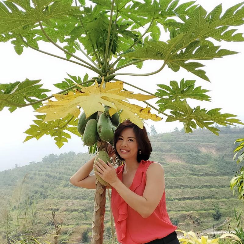 Dong thai hiem hoi cua Phuong Loan ke tu khi Chi Tai qua doi-Hinh-9