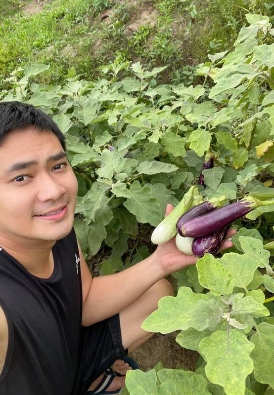 Minh Luan ve que Dong Thap cham manh vuon 2.000 m2-Hinh-4
