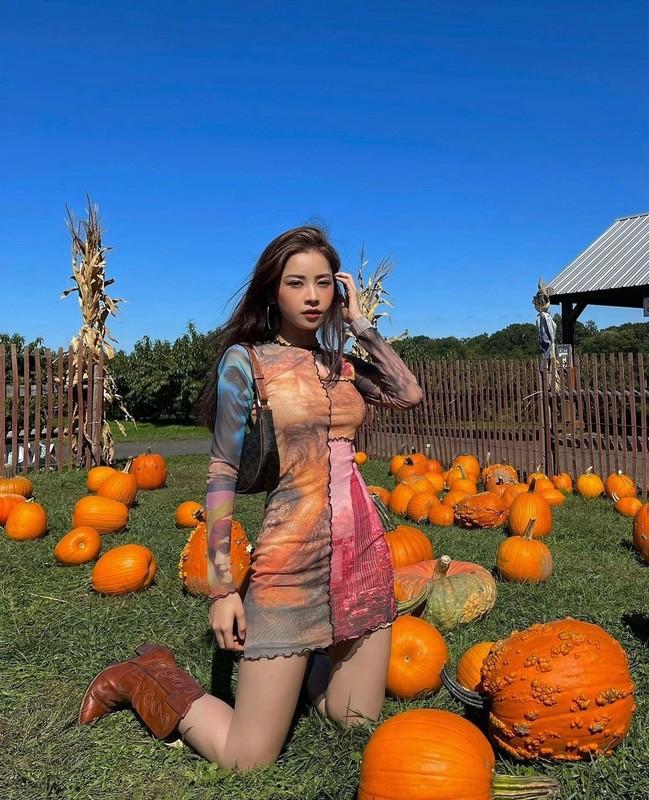 Diva Hong Nhung thay xau ho ve ban than-Hinh-5