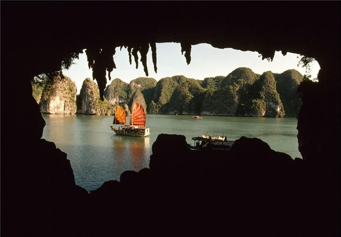 Nhip song hoi ha o Quang Ninh nam 1994-1995-Hinh-2
