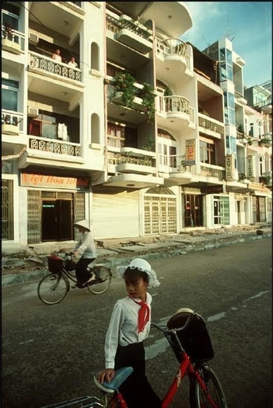 Nhip song hoi ha o Quang Ninh nam 1994-1995-Hinh-6