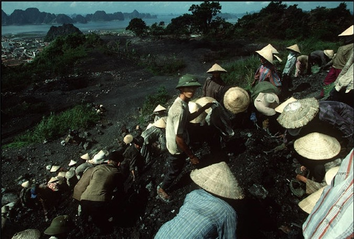 Nhip song hoi ha o Quang Ninh nam 1994-1995-Hinh-8