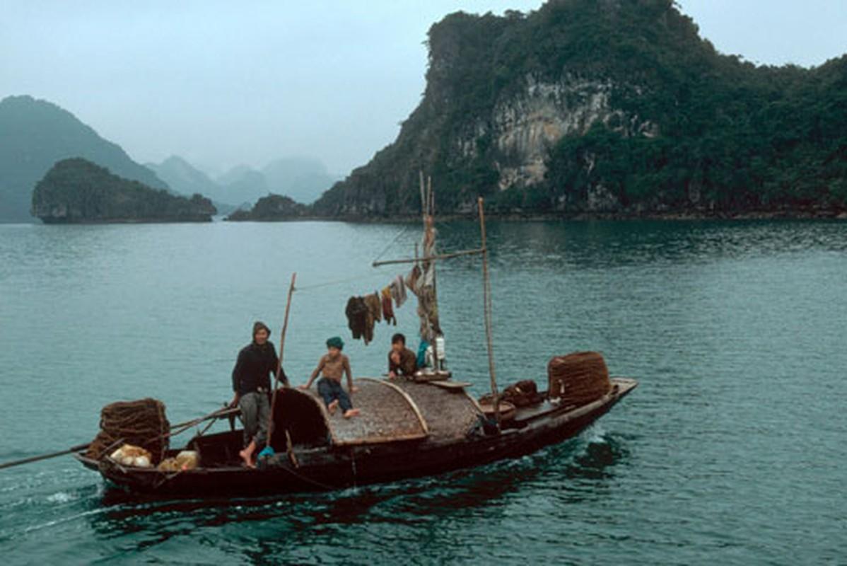 Nhip song hoi ha o Quang Ninh nam 1994-1995