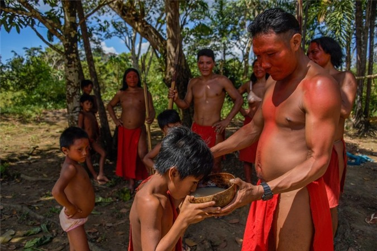 Bi an bo lac biet lap o tan sau trong rung ram Amazon-Hinh-11