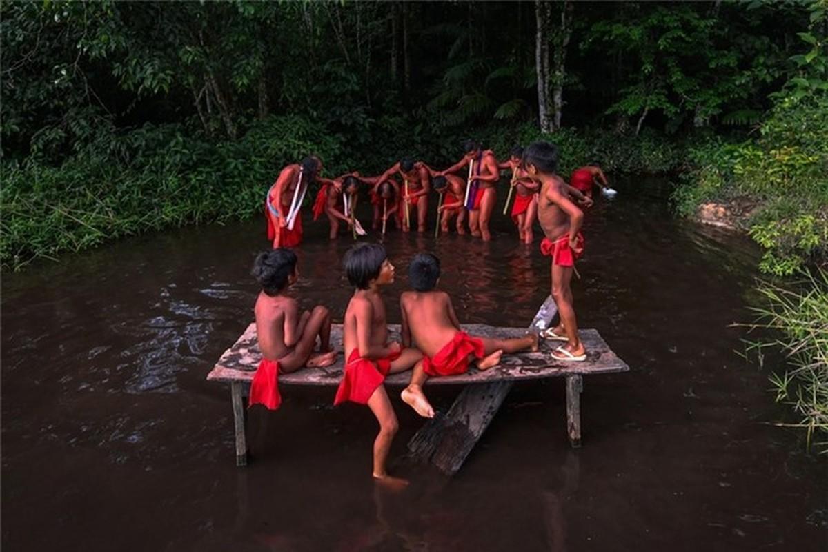 Bi an bo lac biet lap o tan sau trong rung ram Amazon-Hinh-13