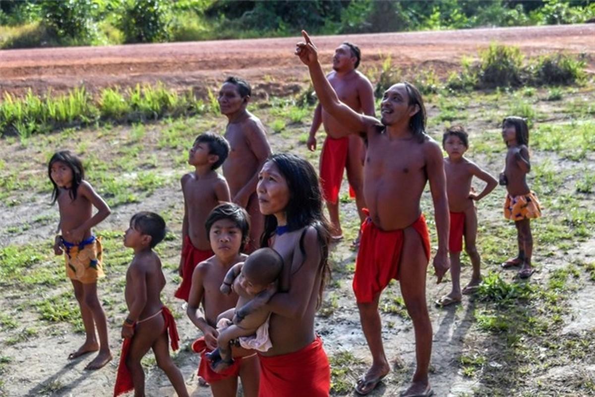 Bi an bo lac biet lap o tan sau trong rung ram Amazon-Hinh-14