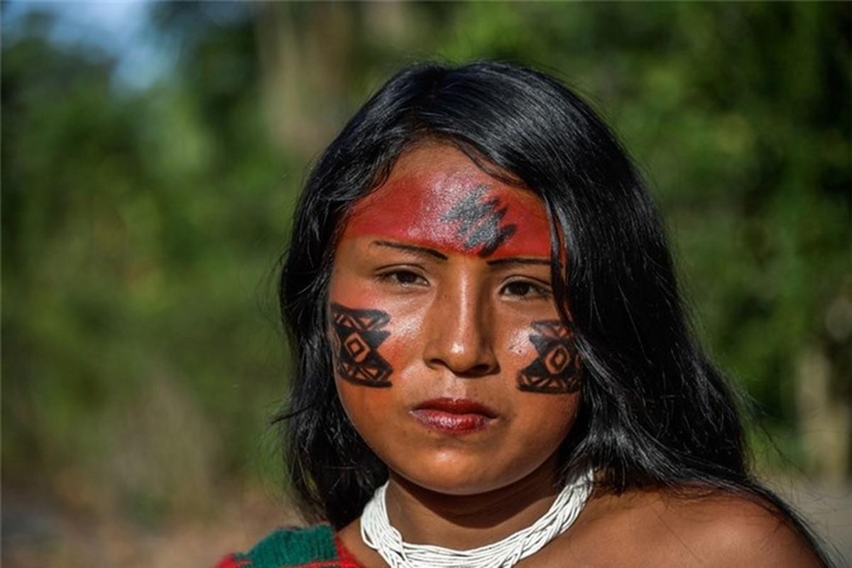 Bi an bo lac biet lap o tan sau trong rung ram Amazon-Hinh-15