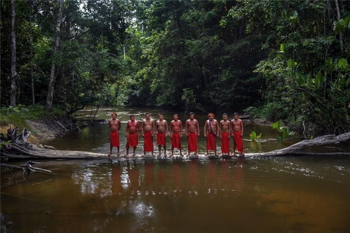 Bi an bo lac biet lap o tan sau trong rung ram Amazon-Hinh-2