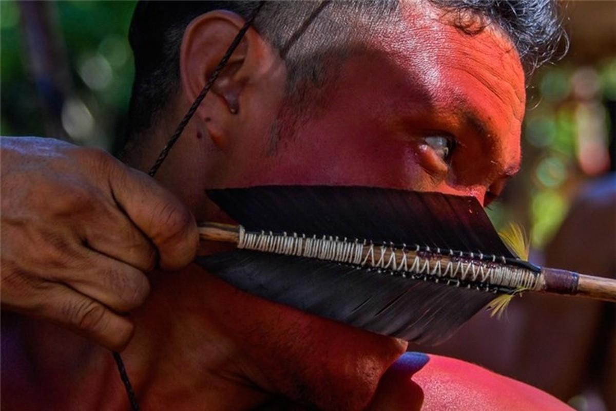 Bi an bo lac biet lap o tan sau trong rung ram Amazon-Hinh-6