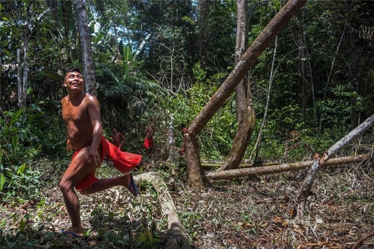 Bi an bo lac biet lap o tan sau trong rung ram Amazon-Hinh-8