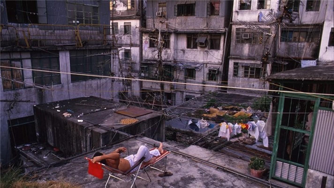 Can canh khu o chuot khung khiep nhat Hong Kong-Hinh-10
