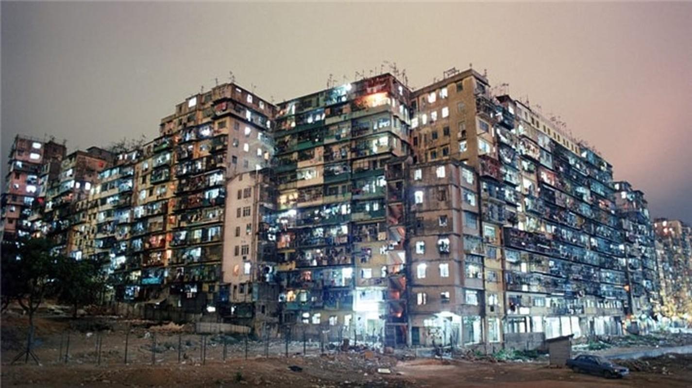 Can canh khu o chuot khung khiep nhat Hong Kong-Hinh-11