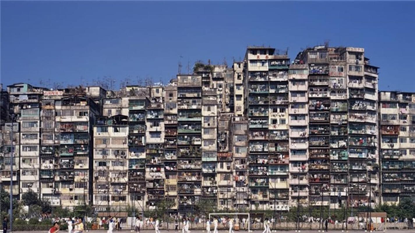 Can canh khu o chuot khung khiep nhat Hong Kong-Hinh-2