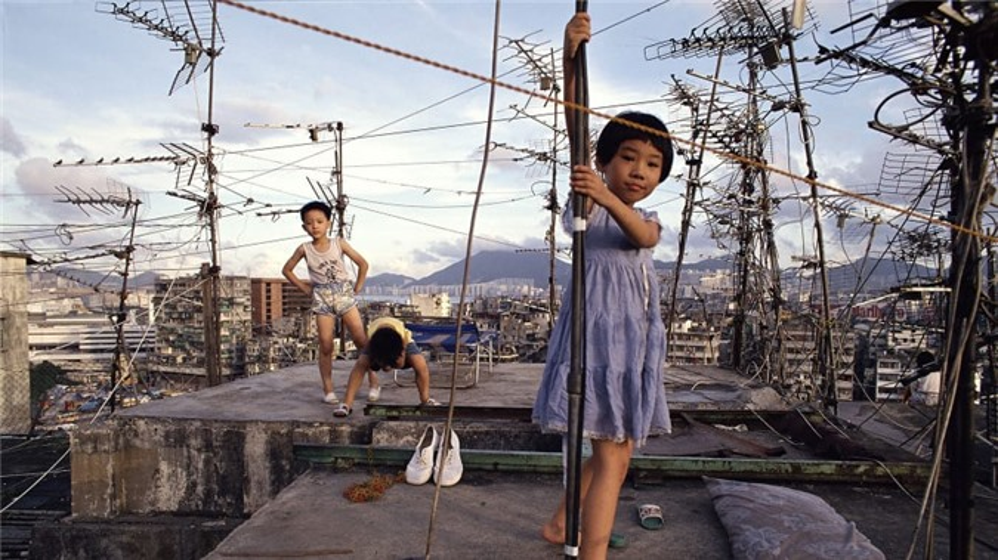 Can canh khu o chuot khung khiep nhat Hong Kong-Hinh-3