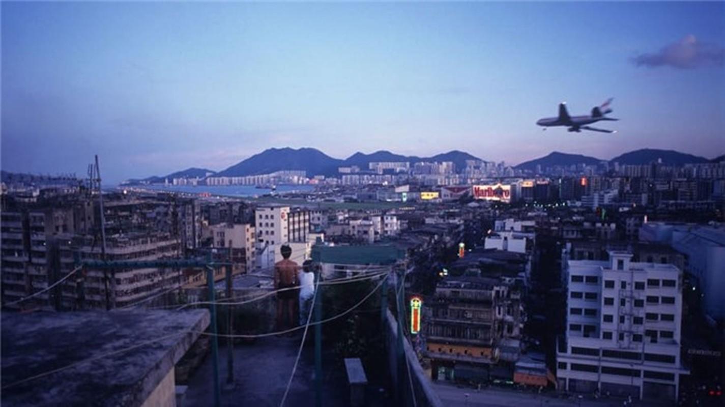 Can canh khu o chuot khung khiep nhat Hong Kong-Hinh-9