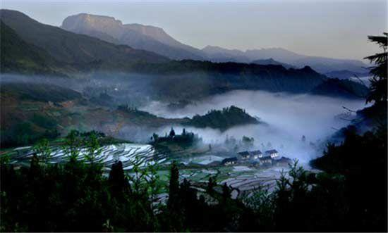 7 diem du lich rung ron o Trung Quoc khong danh cho nguoi yeu tim-Hinh-16