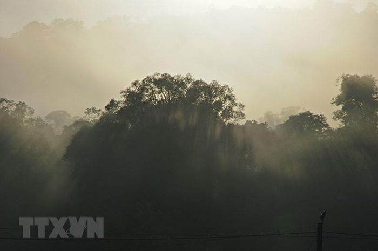 He lo bau vat troi ban trong Khu du tru sinh quyen Kon Ha Nung-Hinh-9