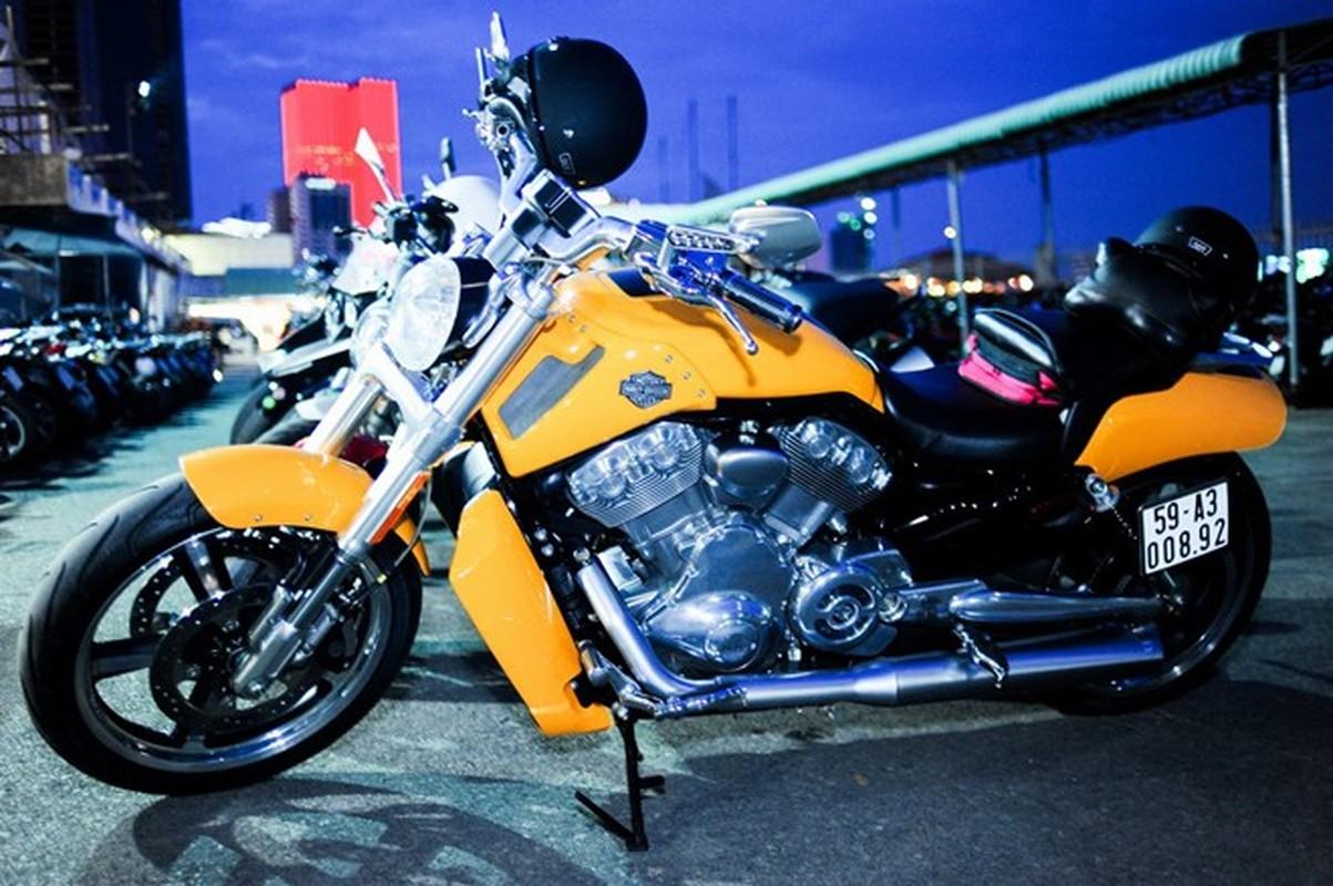 60 moto Harley-Davidson dieu hanh ram ro o Sai Gon-Hinh-3