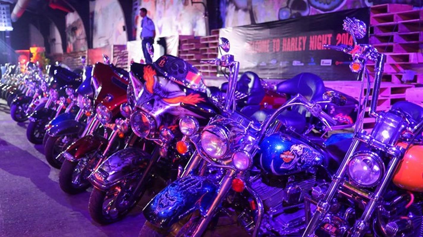 60 moto Harley-Davidson dieu hanh ram ro o Sai Gon-Hinh-6