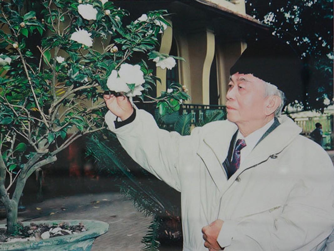 Anh xuc dong ve doi thuong cua Dai tuong Vo Nguyen Giap-Hinh-3