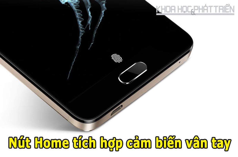 Soi dien thoai Alcatel Flash Plus 2 sap ban ra tai Viet Nam-Hinh-7