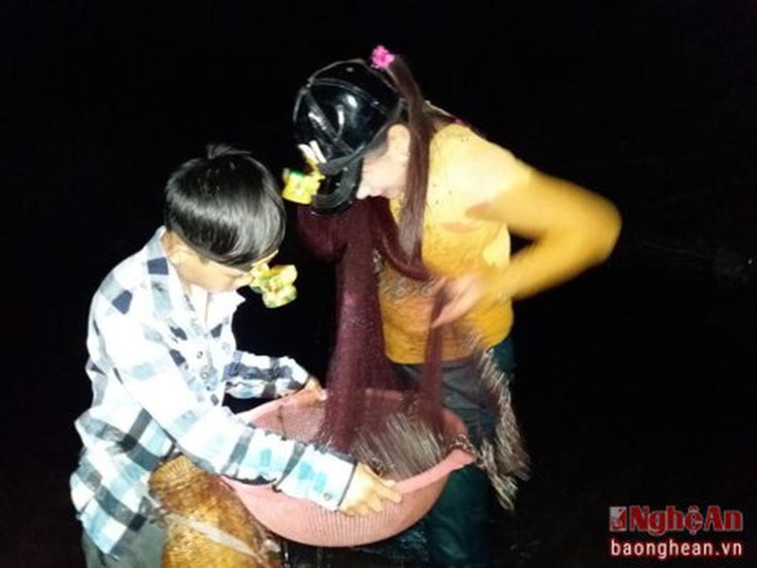 Hot bac voi nghe san nong noc trong dem o mien Tay xu Nghe-Hinh-3