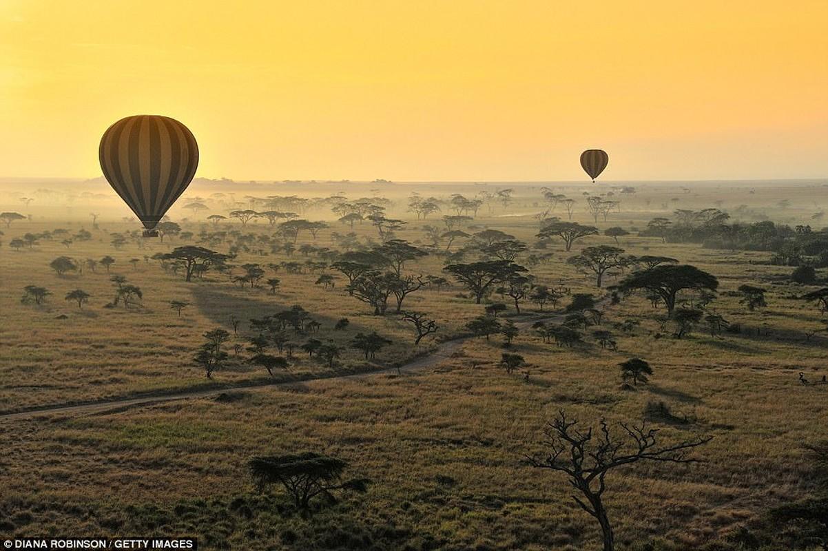 Tanzania: Nước Châu Phi có danh sách nhờ khí hậu ấm áp, địa lý đa dạng, Núi Kilimanjaro và Serengeti. Hình ảnh là những quả cầu khí cầu nóng lên trên savannah của Vườn Quốc gia Serengeti