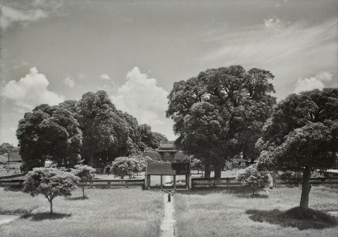 Dien mao Van Mieu - Quoc Tu Giam thap nien 1920-Hinh-3