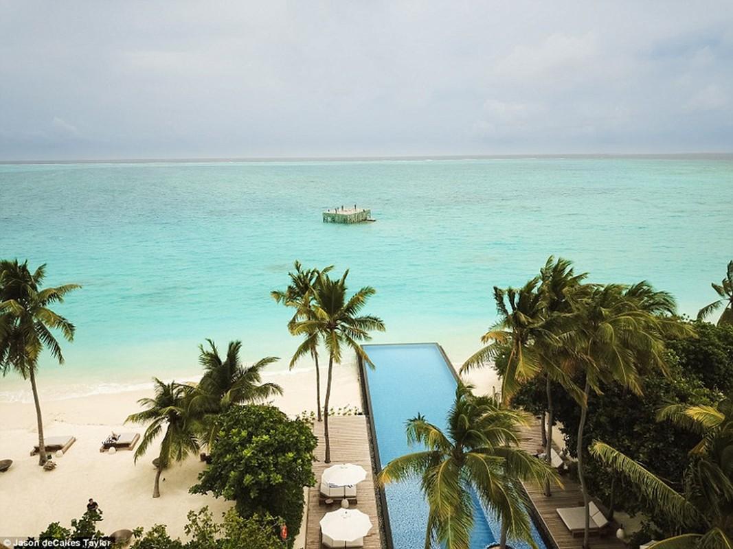 Phong trung bay nghe thuat thuy trieu doc dao o Maldives-Hinh-8