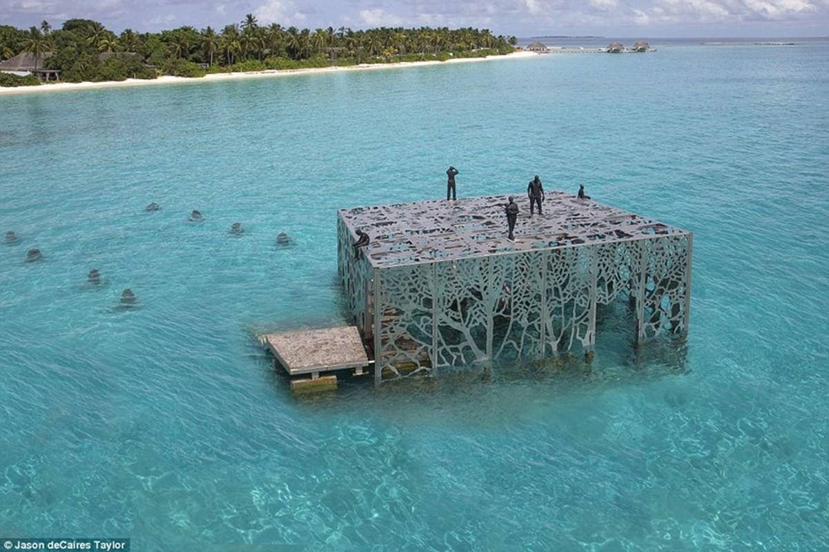 Phong trung bay nghe thuat thuy trieu doc dao o Maldives