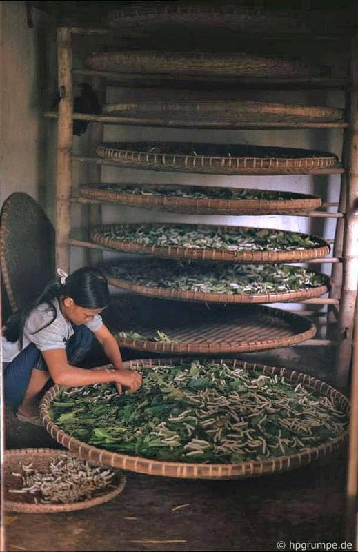 Hinh anh kho quen ve nong thon Ha Noi nam 1991-Hinh-5