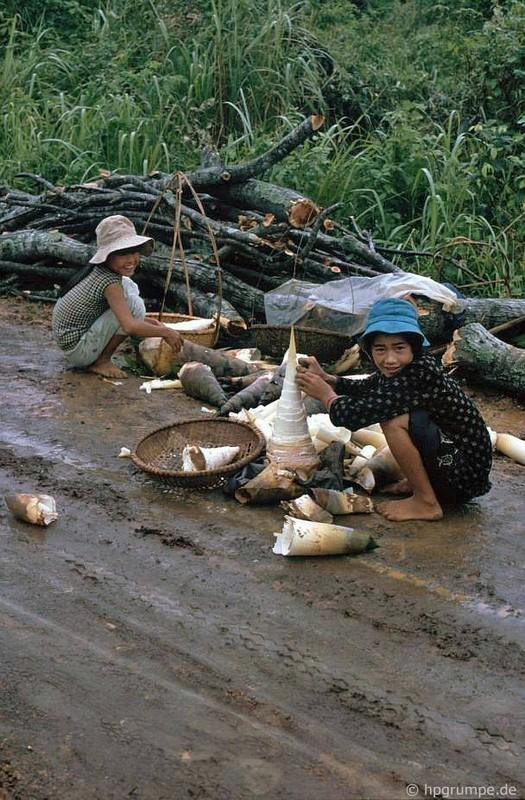 Kham pha bat ngo dieu dac biet o Khe Sanh nam 1992-Hinh-9