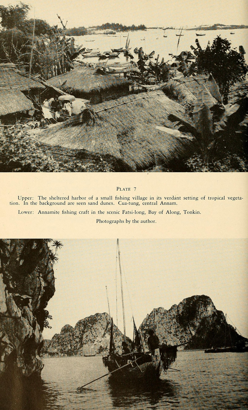 La lung xu Dong Duong nam 1944 qua sach anh cua My-Hinh-6
