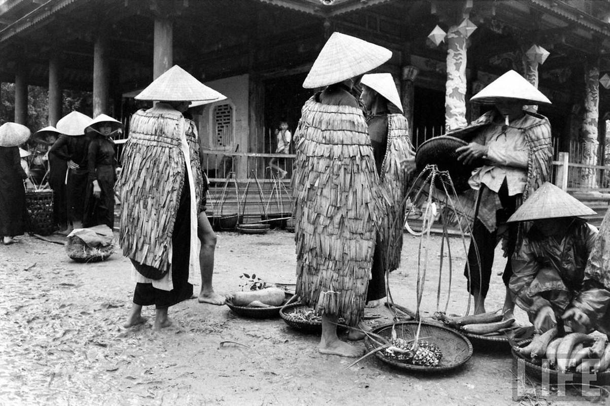 Can canh cuoc song cua dan ngheo o Hue nam 1961-Hinh-10