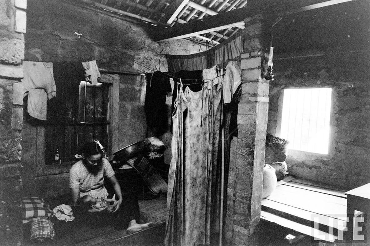 Can canh cuoc song cua dan ngheo o Hue nam 1961-Hinh-2