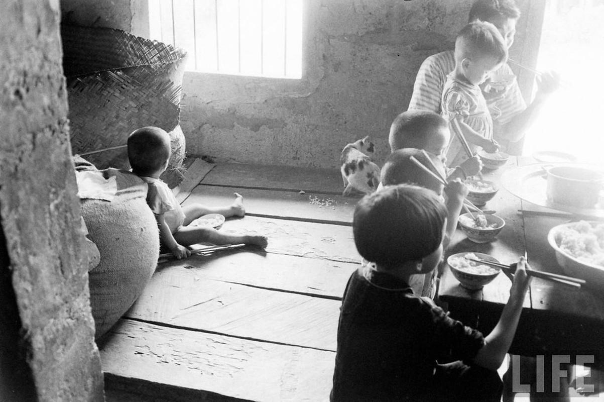 Can canh cuoc song cua dan ngheo o Hue nam 1961-Hinh-6