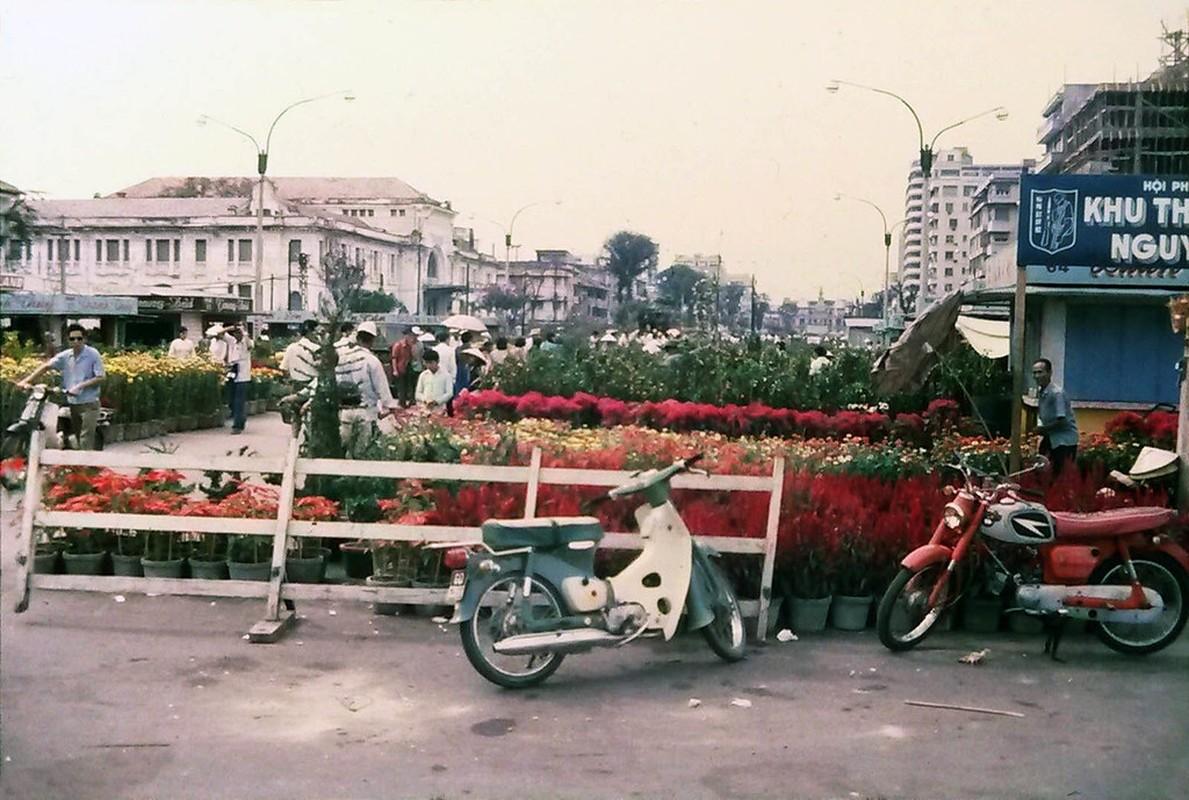 Cuc doc cho hoa Tet Sai Gon 1971 qua anh cua nguoi My-Hinh-4