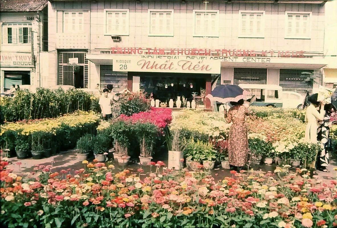 Cuc doc cho hoa Tet Sai Gon 1971 qua anh cua nguoi My-Hinh-5
