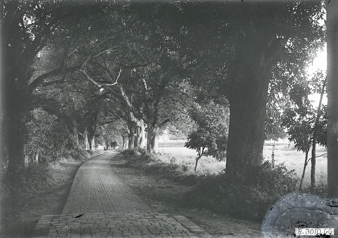 Anh de doi ve den Voi Phuc o Ha Noi nam 1926-Hinh-5