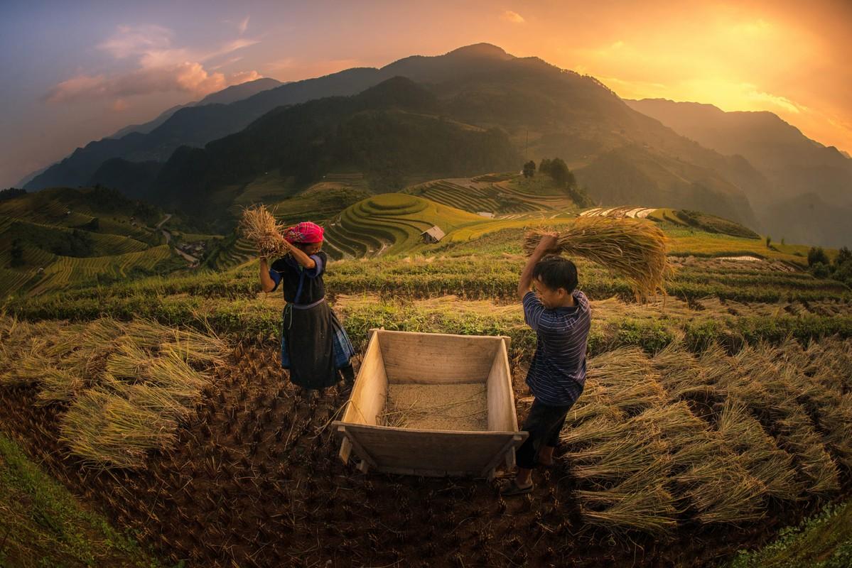 Mu Cang Chai dep nhu tranh qua ong kinh pho nhay quoc te-Hinh-6