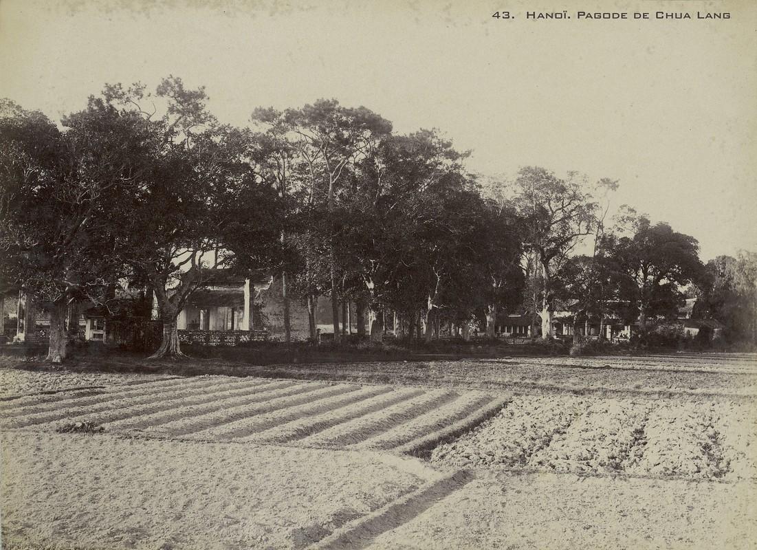Anh hiem ve cac den chua noi tieng Ha Noi nam 1899-Hinh-7