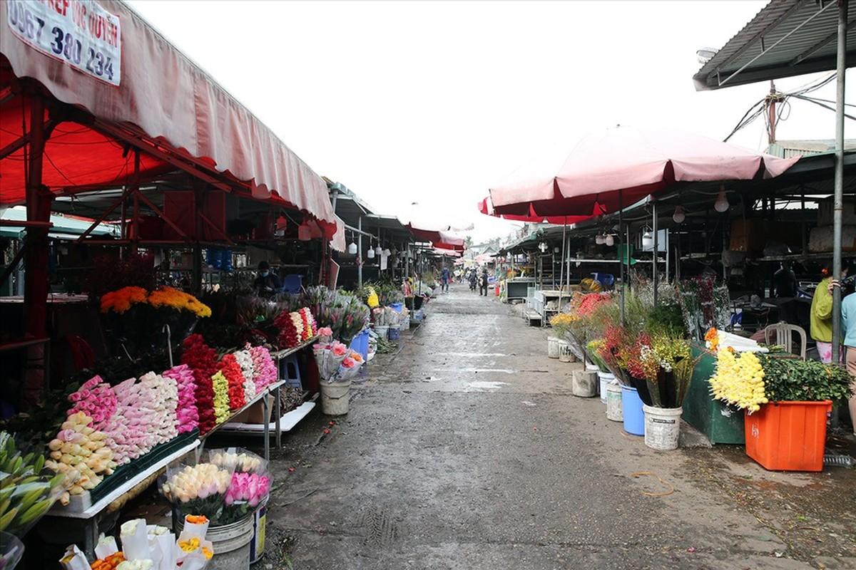 Pho Thu tuong Vu Duc Dam thi sat cho hoa Tet, trung tam thuong mai-Hinh-4