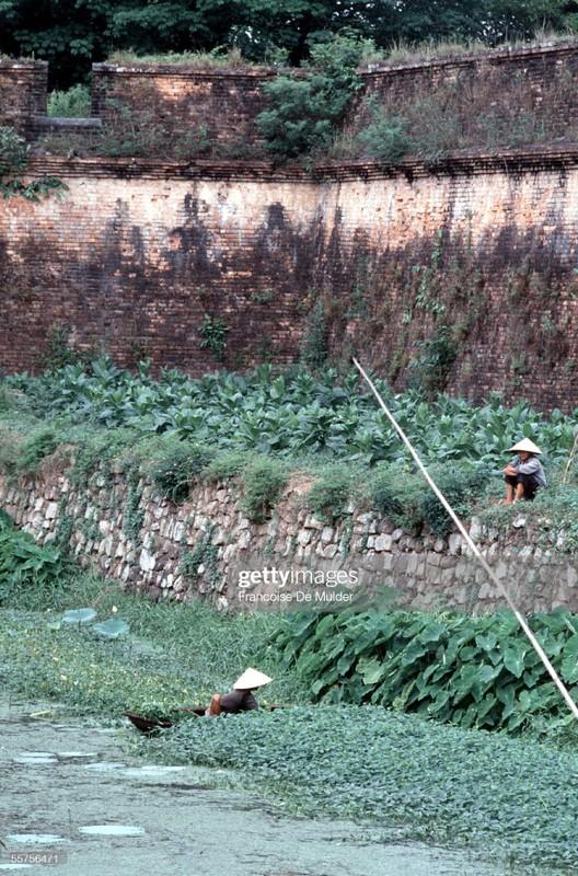 Co do Hue nam 1989 qua anh cua Francoise De Mulder-Hinh-8