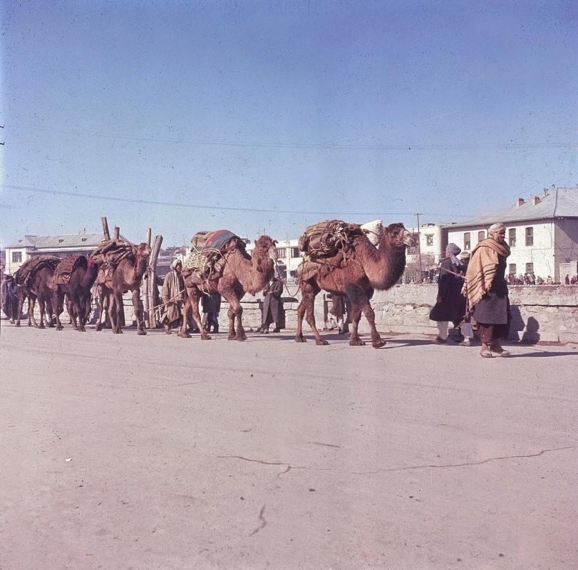 Bat ngo cuoc song binh yen sung tuc o thu do Afghanistan thap nien 1960-Hinh-8