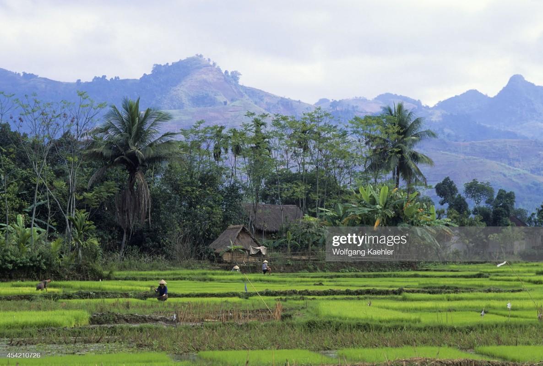 Dep ngat ngay khung canh hoang so cua Hoa Binh nam 1992-Hinh-10