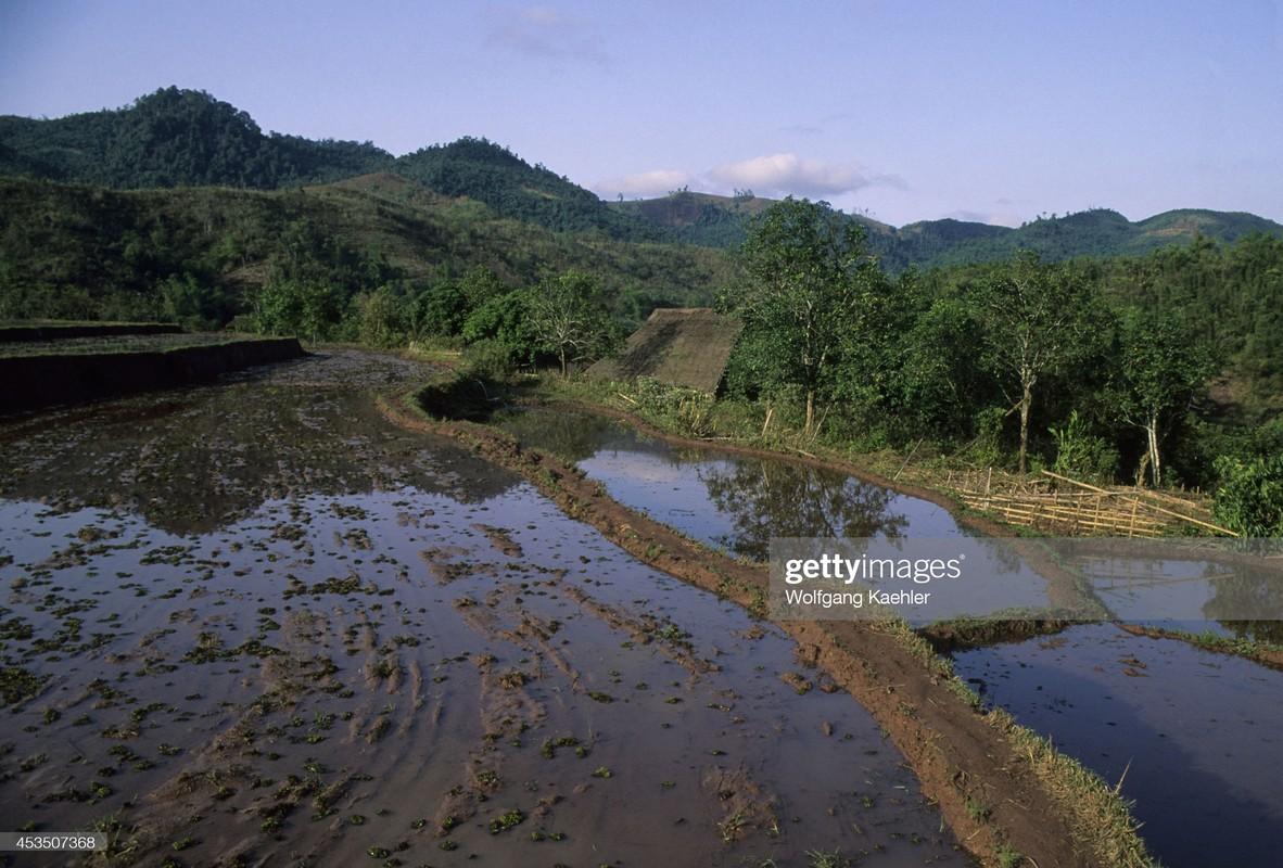 Dep ngat ngay khung canh hoang so cua Hoa Binh nam 1992-Hinh-2
