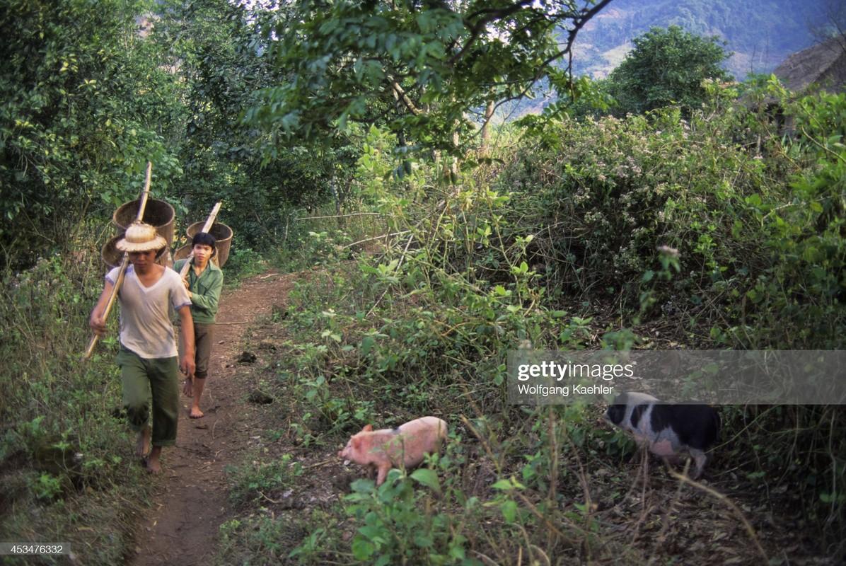 Dep ngat ngay khung canh hoang so cua Hoa Binh nam 1992-Hinh-6