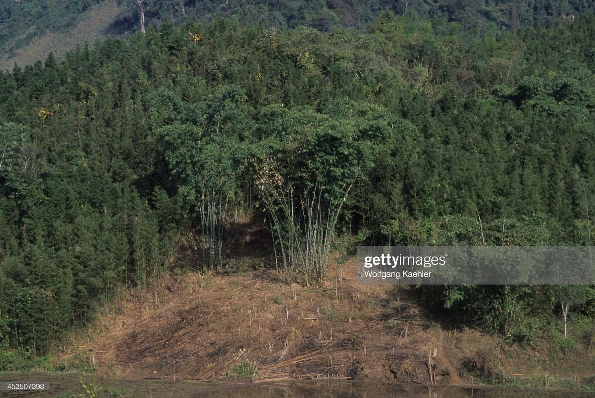 Dep ngat ngay khung canh hoang so cua Hoa Binh nam 1992-Hinh-8
