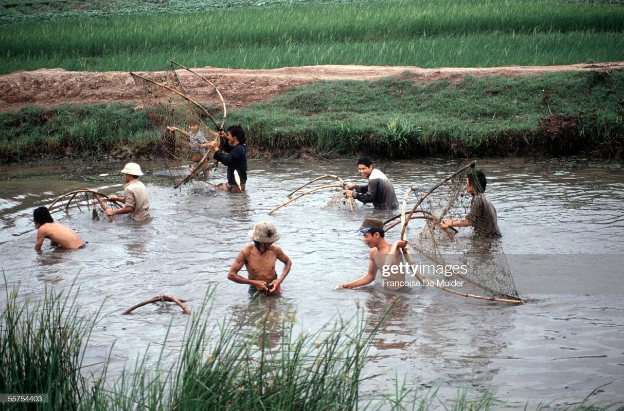 Boi hoi ngam cuoc song o thanh pho Vinh nam 1989-Hinh-5